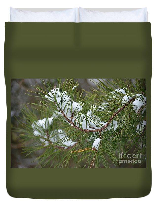 Melting Snow In The Pines Duvet Cover featuring the photograph Melting Snow In The Pines by Maria Urso