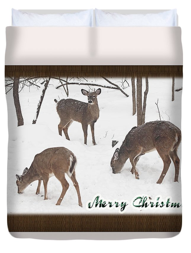 Christmas Duvet Cover featuring the photograph Merry Christmas Card - Whitetail Deer In Snow by Mother Nature