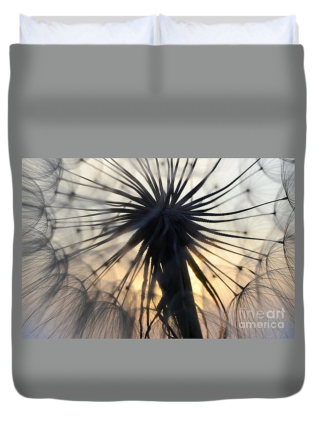 Macro Duvet Cover featuring the photograph Beauty Of The Dandelion 1 by Bob Christopher
