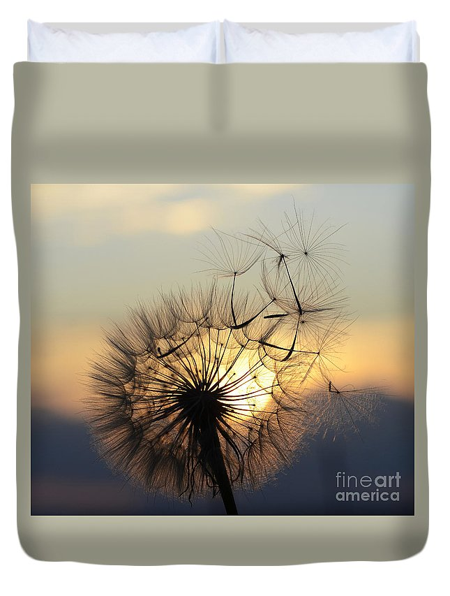Seeds Duvet Cover featuring the photograph Milkweed 5 by Bob Christopher