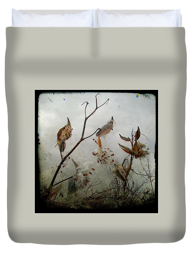 Milkweed Duvet Cover featuring the photograph Milky Milkweed by Gothicrow Images