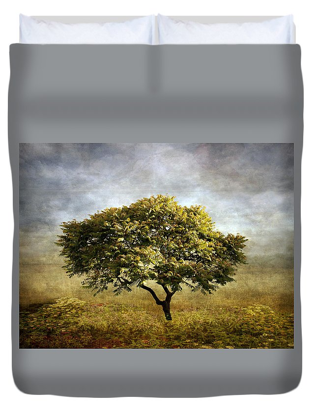 Tree Duvet Cover featuring the photograph Mimosa Magic by Jessica Jenney