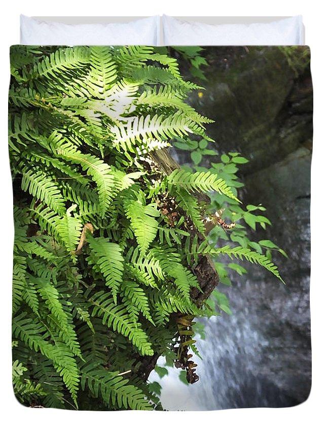 Waterfall Duvet Cover featuring the photograph Mine Kill Falls New York by Lizi Beard-Ward