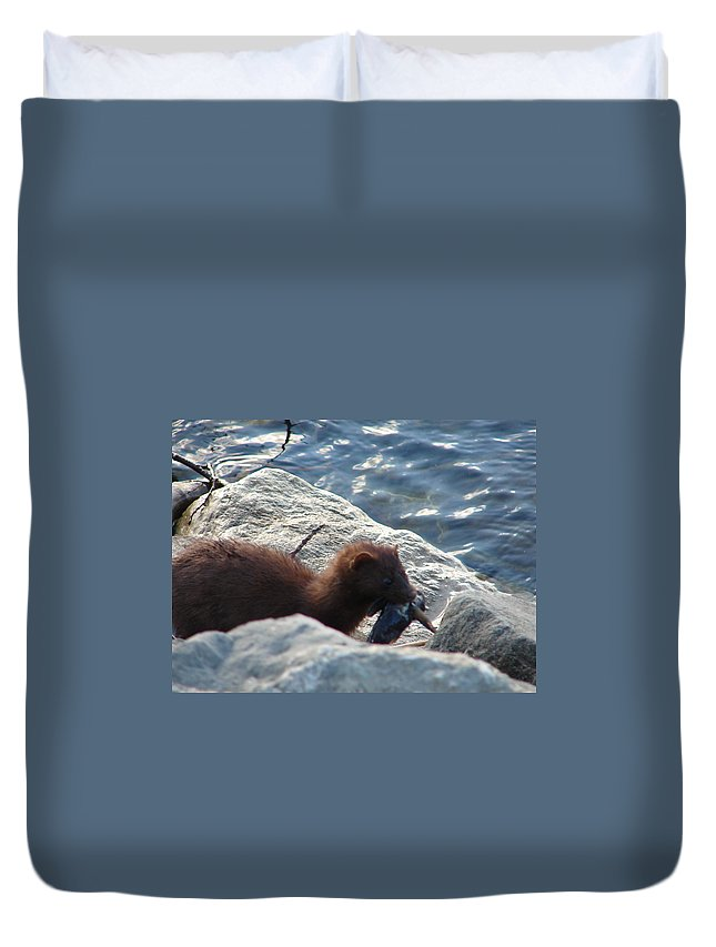 American Mink Duvet Cover featuring the photograph Mink with a Round Goby by Randy J Heath