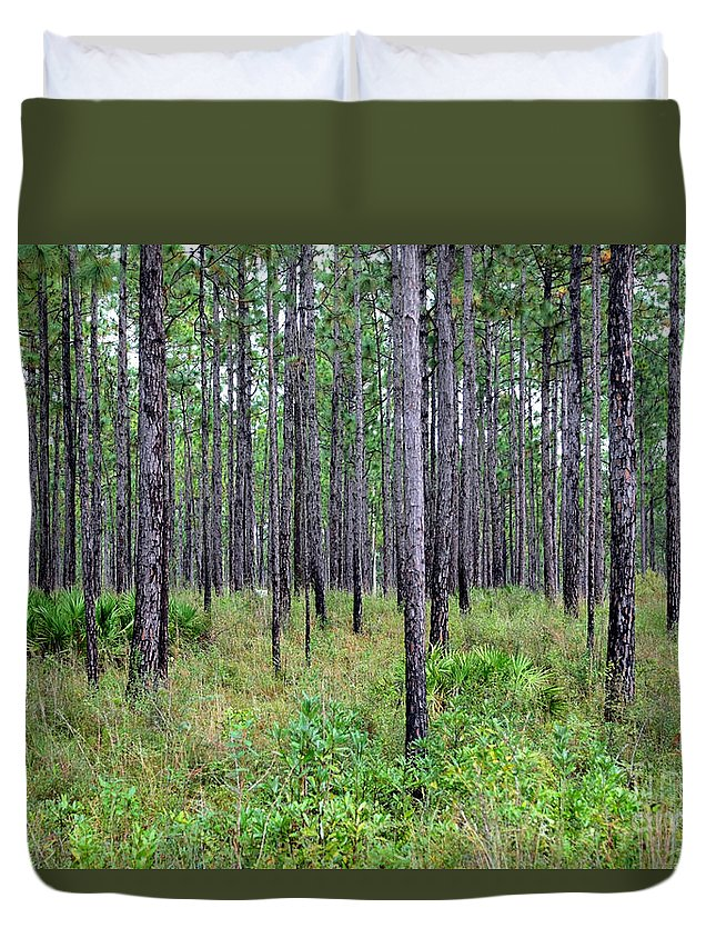 Mississippi Woods Duvet Cover featuring the photograph Mississippi Woods by Carol Groenen