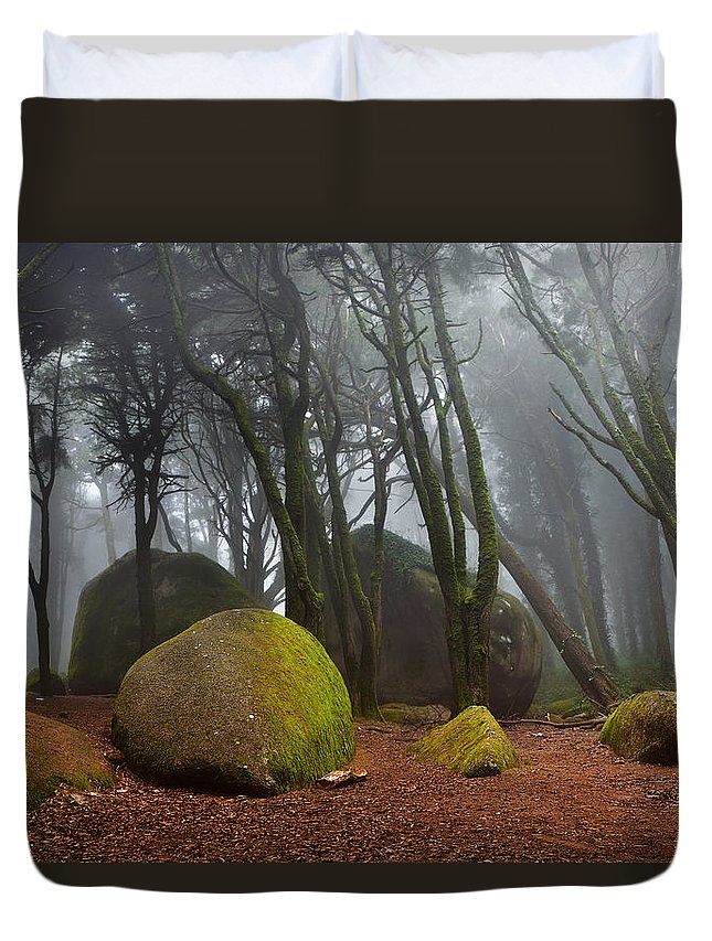 Nature Duvet Cover featuring the photograph Misty by Jorge Maia