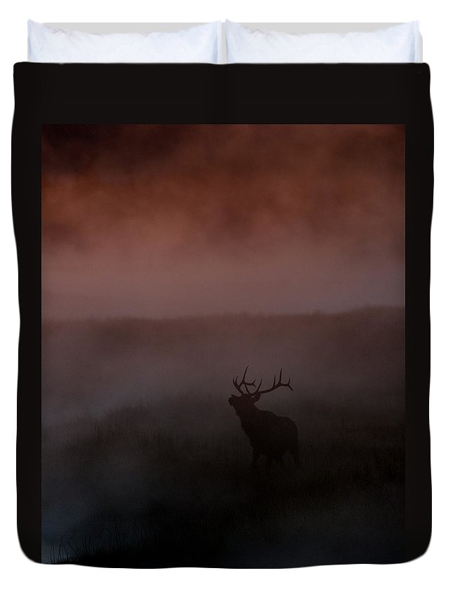 Bull Duvet Cover featuring the photograph Misty Morning Elk by Gary Langley