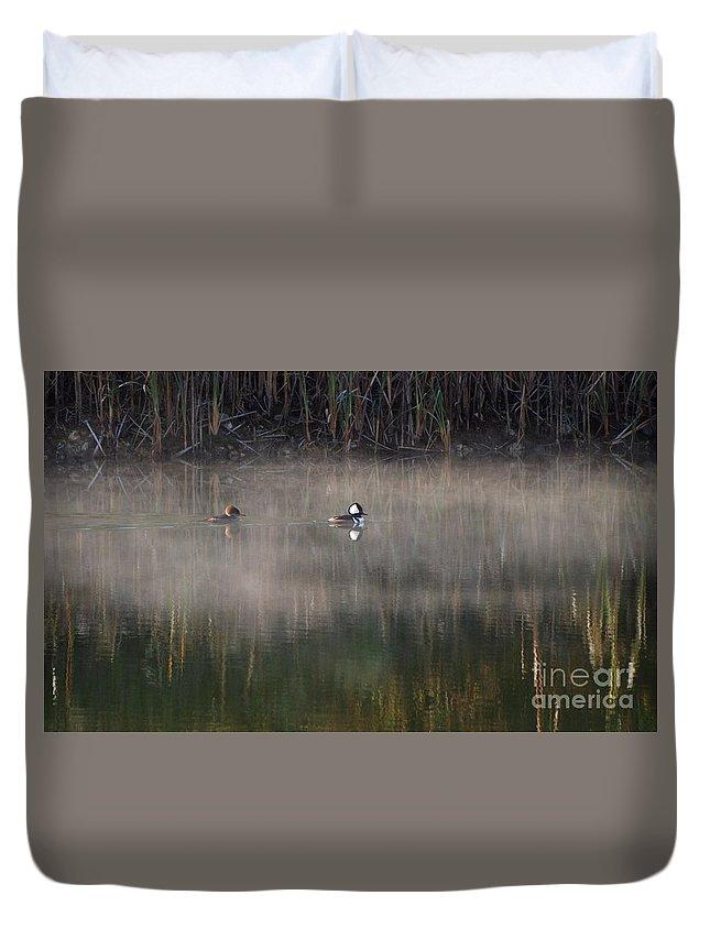 Ducks Duvet Cover featuring the photograph Misty Morning Mergansers by Amy Porter