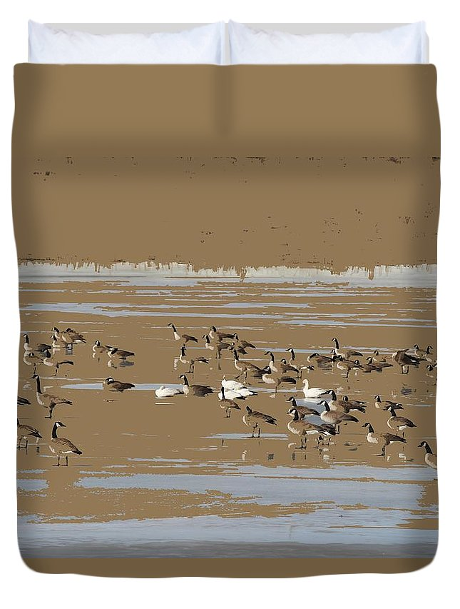Canada Geese Duvet Cover featuring the photograph Mixed Flock by Scott Carlton