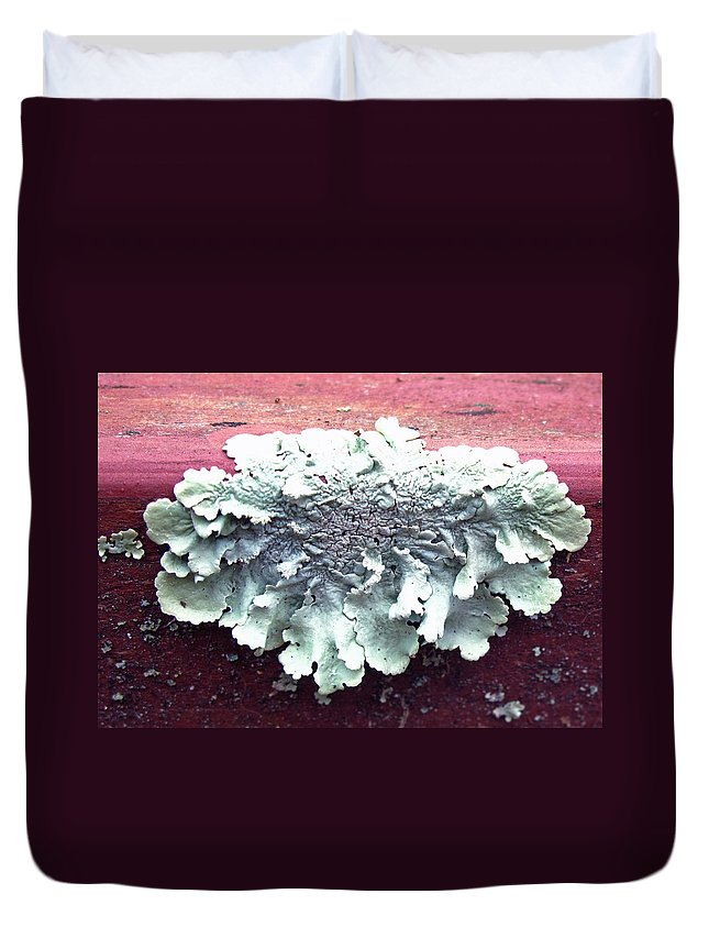 Floral Duvet Cover featuring the photograph Mold Portrait by Barbara McDevitt