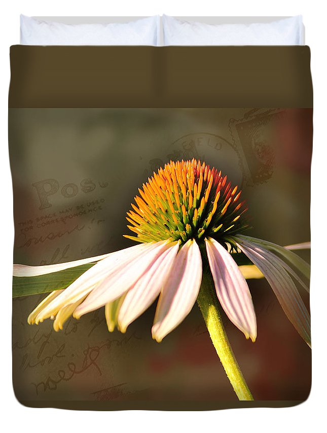Coneflower Duvet Cover featuring the photograph Molly by Karen Beasley