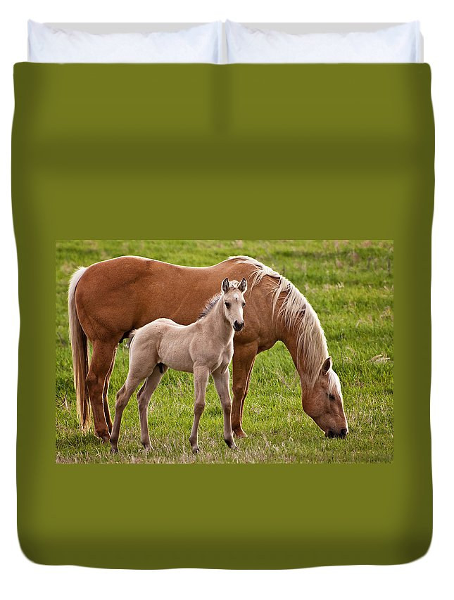 Horse Duvet Cover featuring the photograph Mom And Foal by Donna Doherty