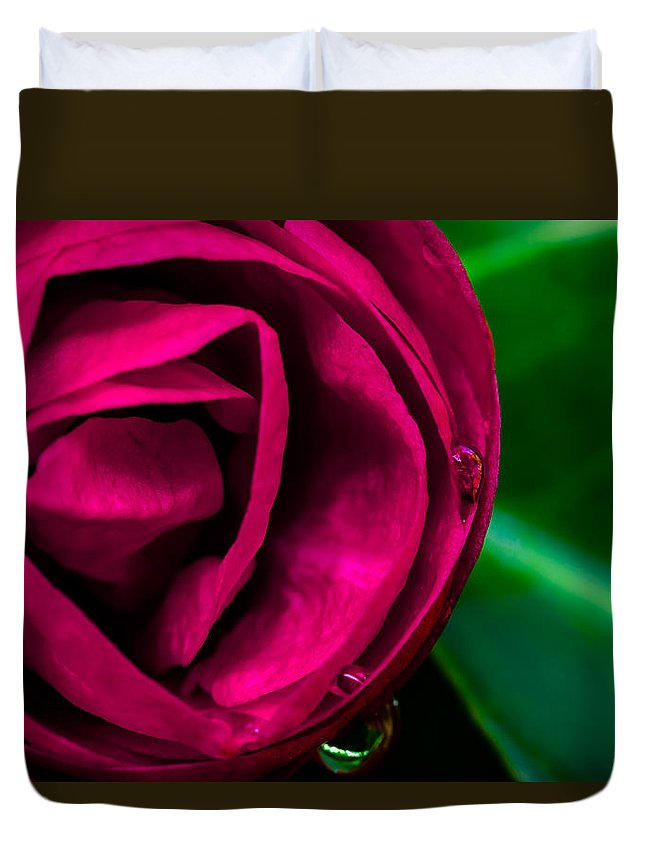 Flower Duvet Cover featuring the photograph Moment by Edgar Laureano