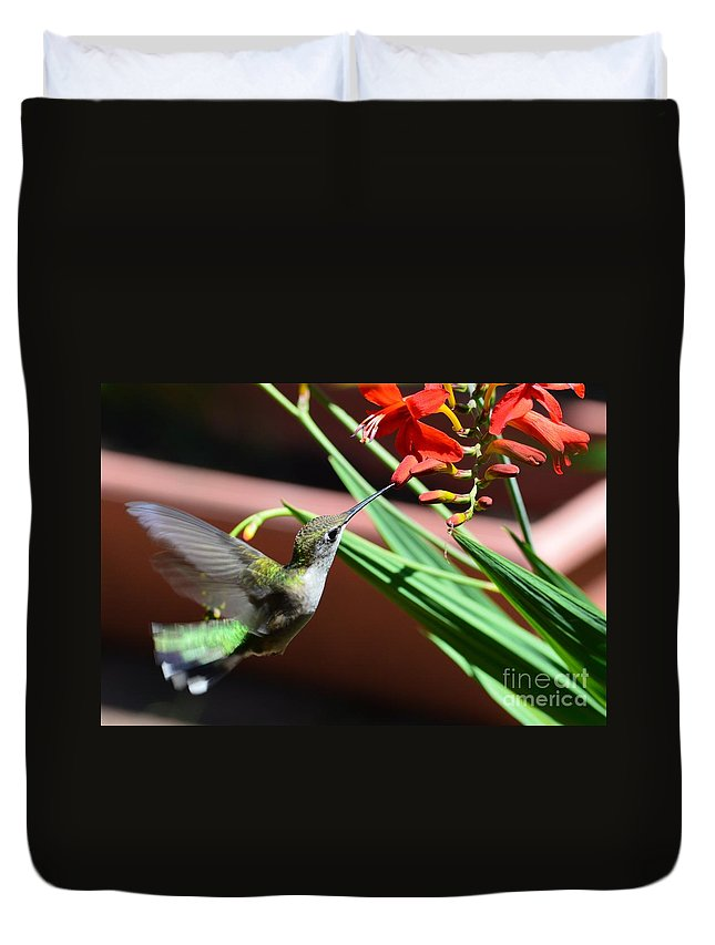 Hummingbird Duvet Cover featuring the photograph Moment In Time by Michelle Welles