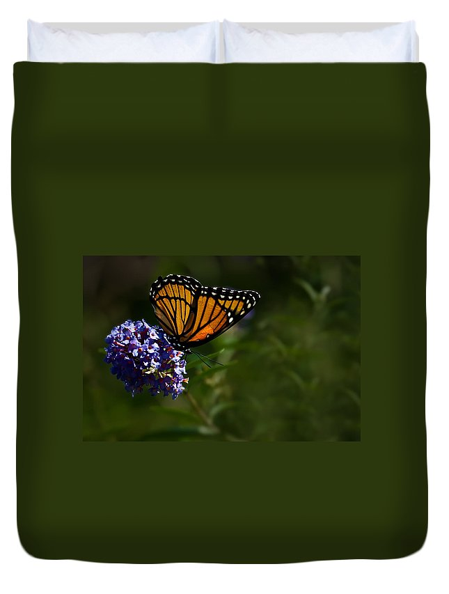 Monarch Butterfly Duvet Cover featuring the photograph Monarch Butterfly by Onyonet Photo Studios