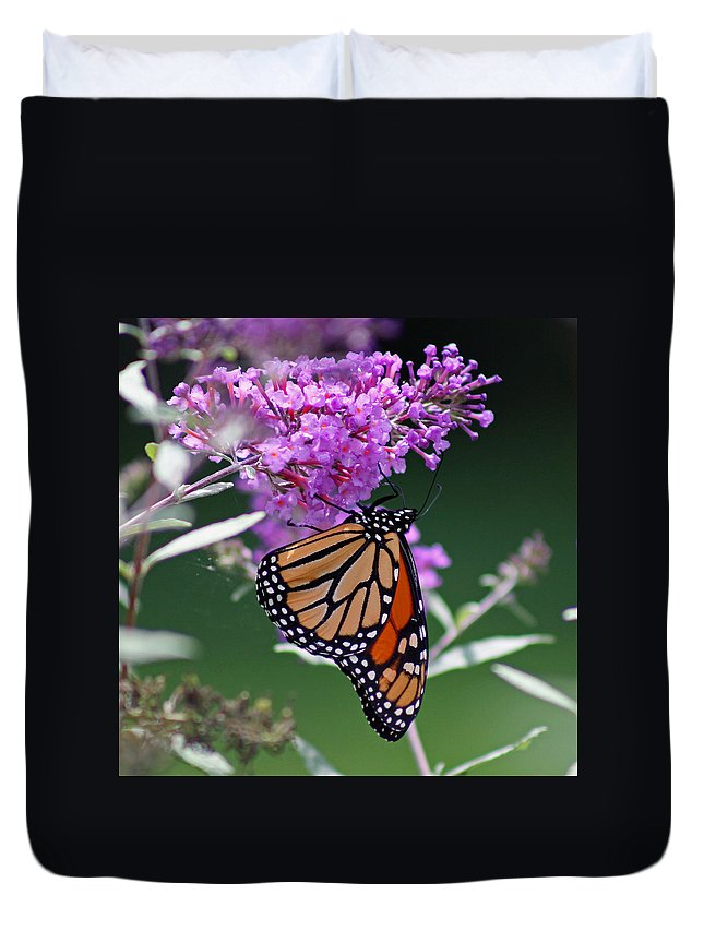 Monarch Duvet Cover featuring the photograph Monarch On Butterfly Bush by Karen Adams
