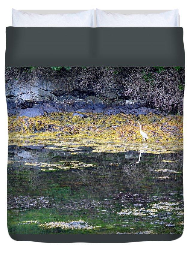 Seascape Duvet Cover featuring the photograph Monetish Egret by Barbara McDevitt