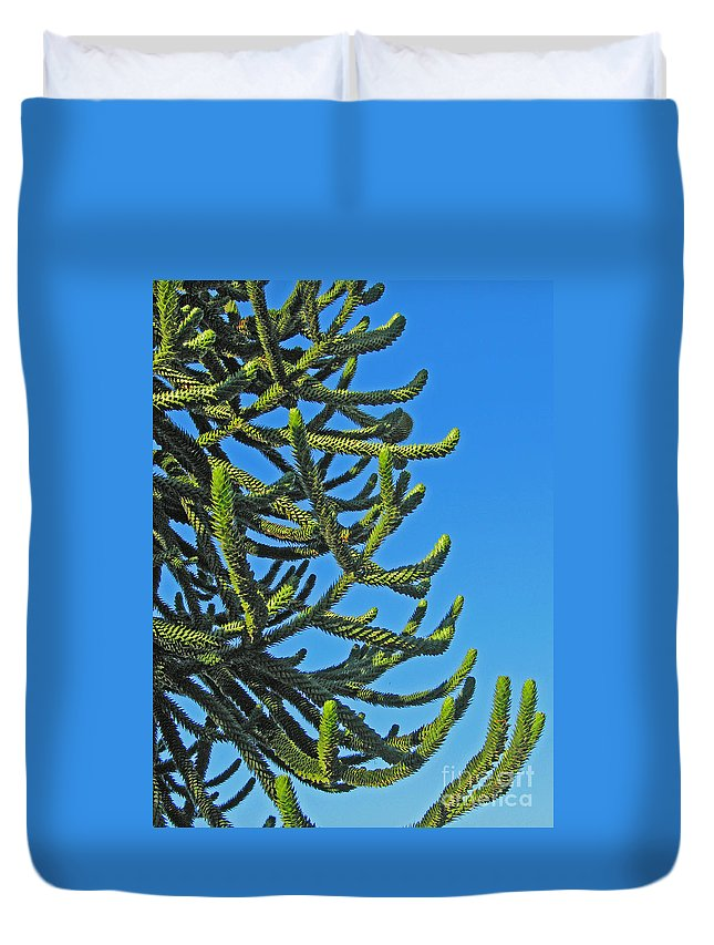 Monkey Puzzle Tree Duvet Cover featuring the photograph Monkey Puzzle Tree by Ann Horn