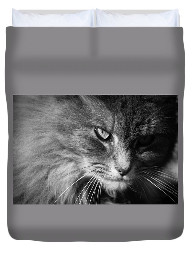 Black Duvet Cover featuring the photograph Moody Cat by Alexander Ferguson