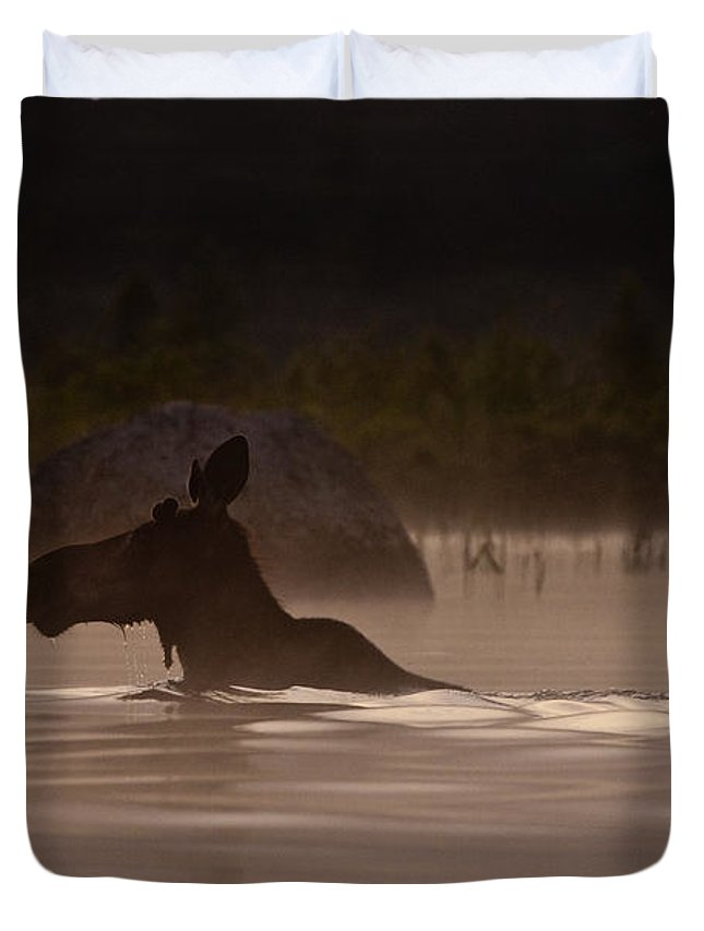 Moose Duvet Cover featuring the photograph Moose Swim by Brent L Ander