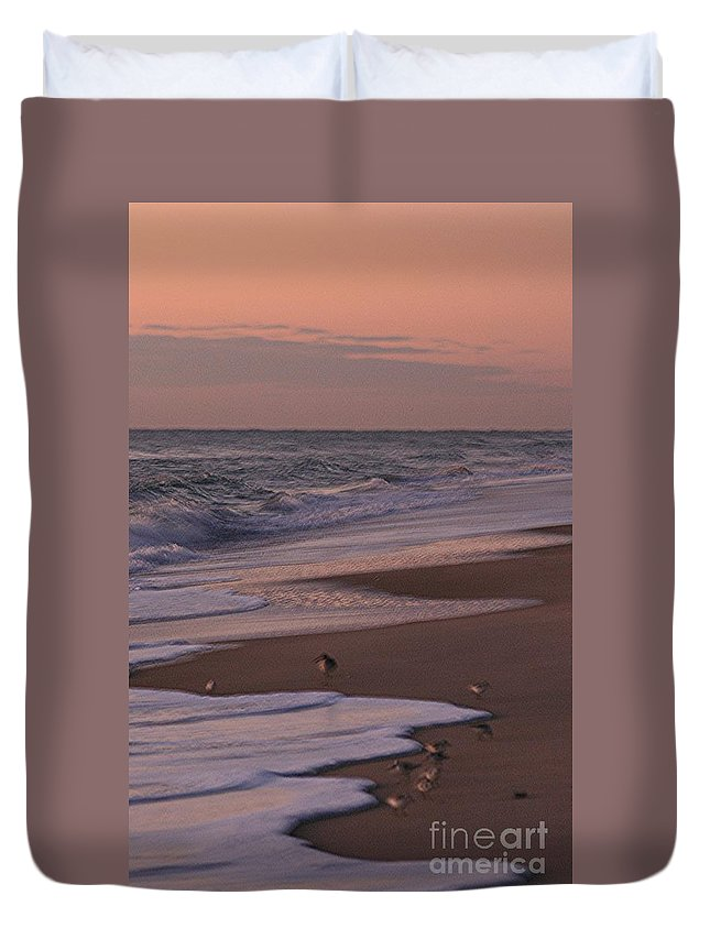 Beach Duvet Cover featuring the photograph Morning Birds At The Beach by Nadine Rippelmeyer
