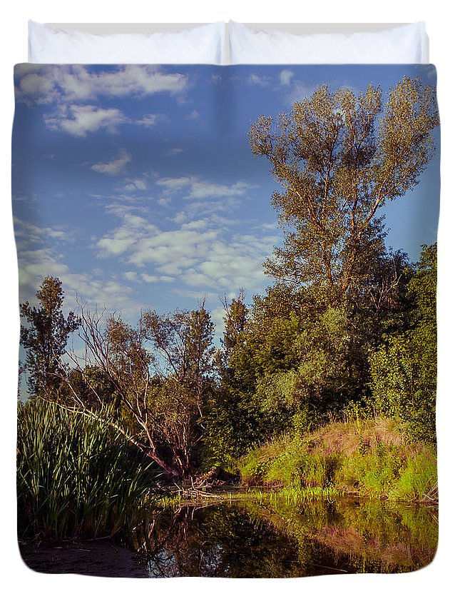 Landscape Duvet Cover featuring the photograph Morning Creek by Dmytro Korol