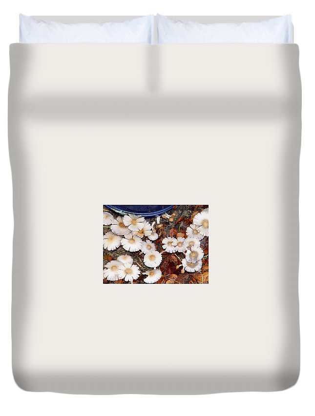 Texas Duvet Cover featuring the photograph Morning Mushrooms by Erich Grant
