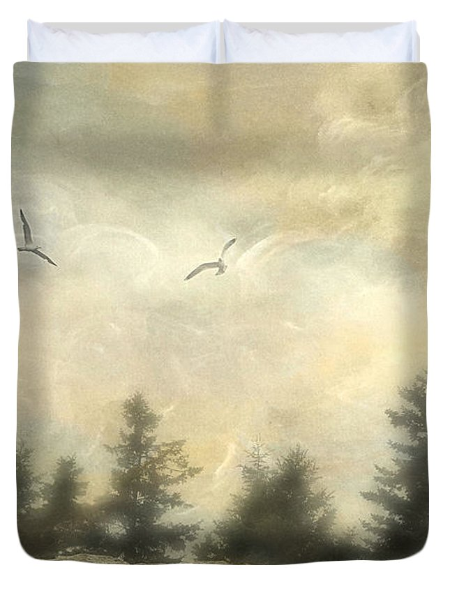 Bay Duvet Cover featuring the photograph Morning On The Coast by Darren Fisher