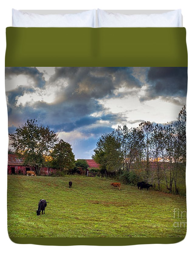 Rural Duvet Cover featuring the photograph Morning On The Farm Four by Ken Frischkorn