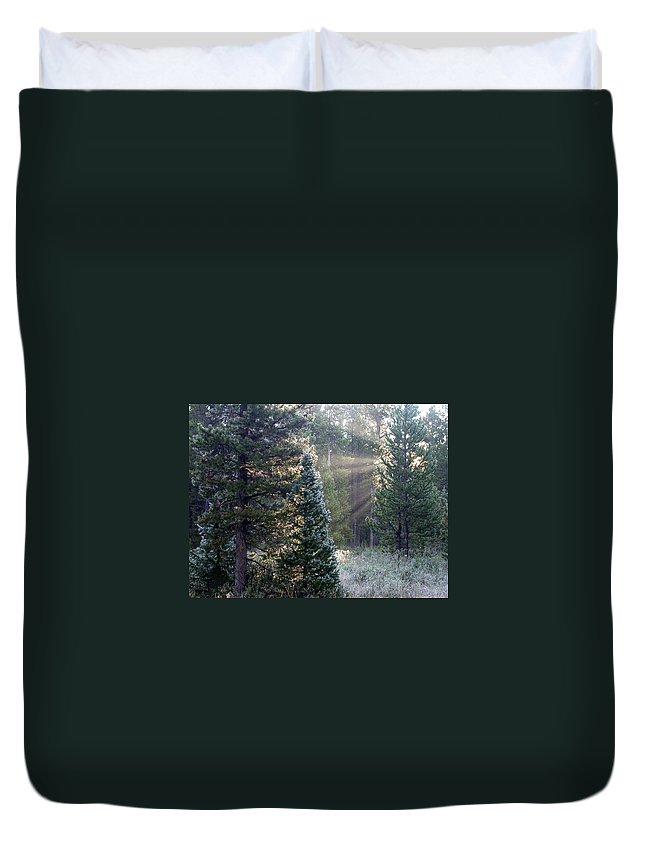 Sunrays Duvet Cover featuring the photograph Morning Rays by Shane Bechler