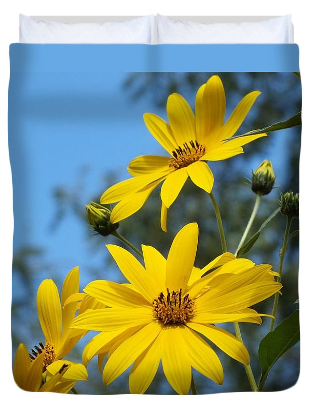 Yellow Duvet Cover featuring the photograph Morning Sunflowers by Christina Shaskus
