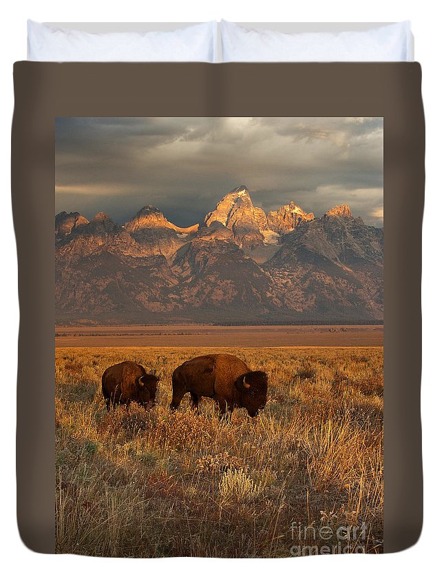 Grand Teton Duvet Cover featuring the photograph Morning Travels In Grand Teton by Sandra Bronstein