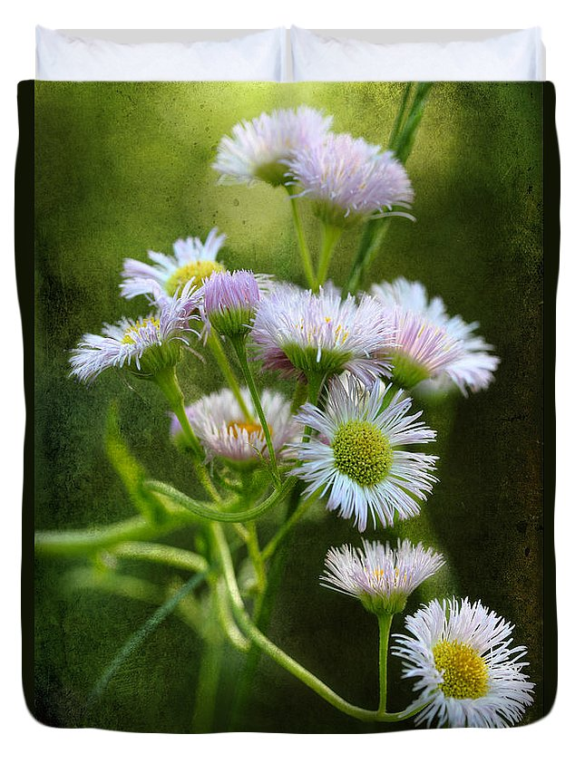 Philadelphia Fleabane Duvet Cover featuring the photograph Morning Visions by Michael Eingle