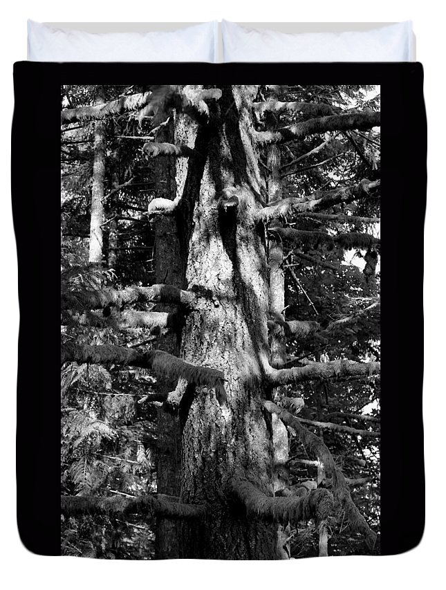 Oregon Duvet Cover featuring the photograph Moss On The Evergreens II In Black And White by Jeanette C Landstrom