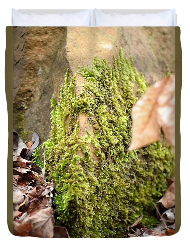 Mossy Rock Abstract 2013 Duvet Cover featuring the photograph Mossy Rock Abstract 2013 by Maria Urso