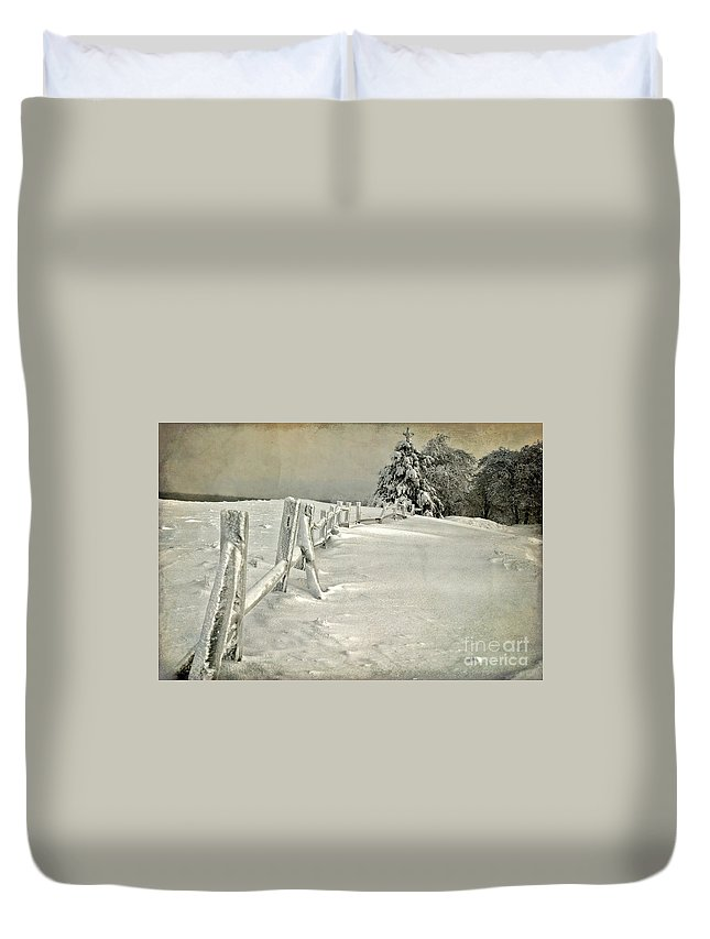 Snow Duvet Cover featuring the photograph Mother Nature's Christmas Tree by Lois Bryan