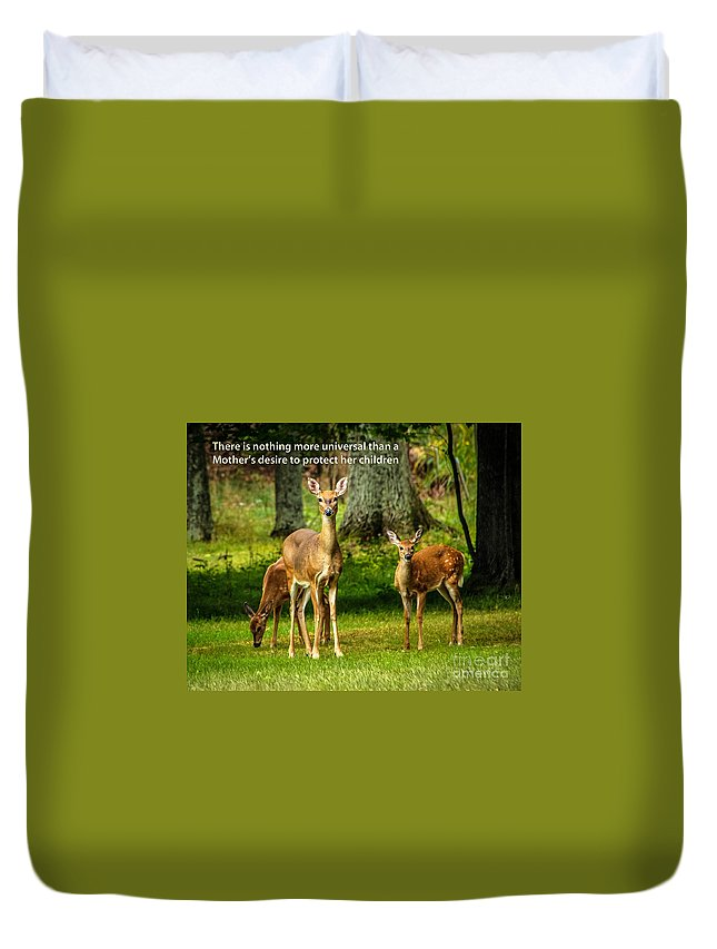Deer Duvet Cover featuring the photograph Mother's Protection by Grace Grogan