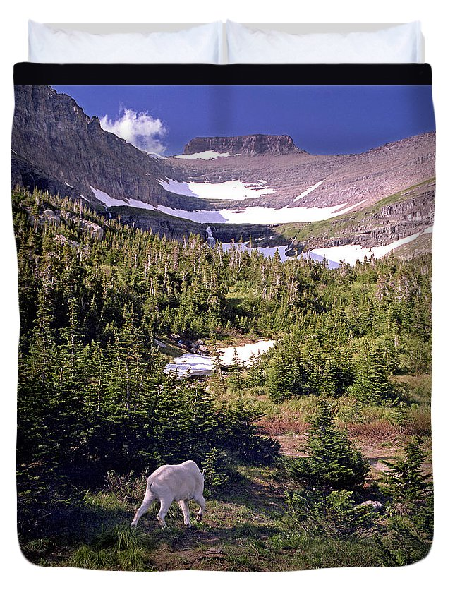 Glacier National Park Duvet Cover featuring the photograph Mountain Goat 5 by Lee Santa