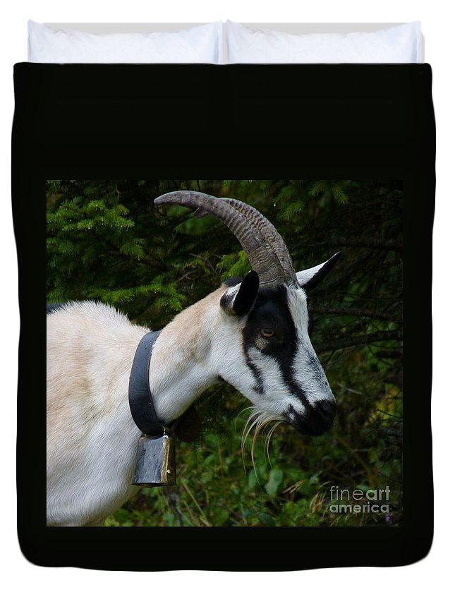 Goat Duvet Cover featuring the photograph Mountain Goat by MAK Photography