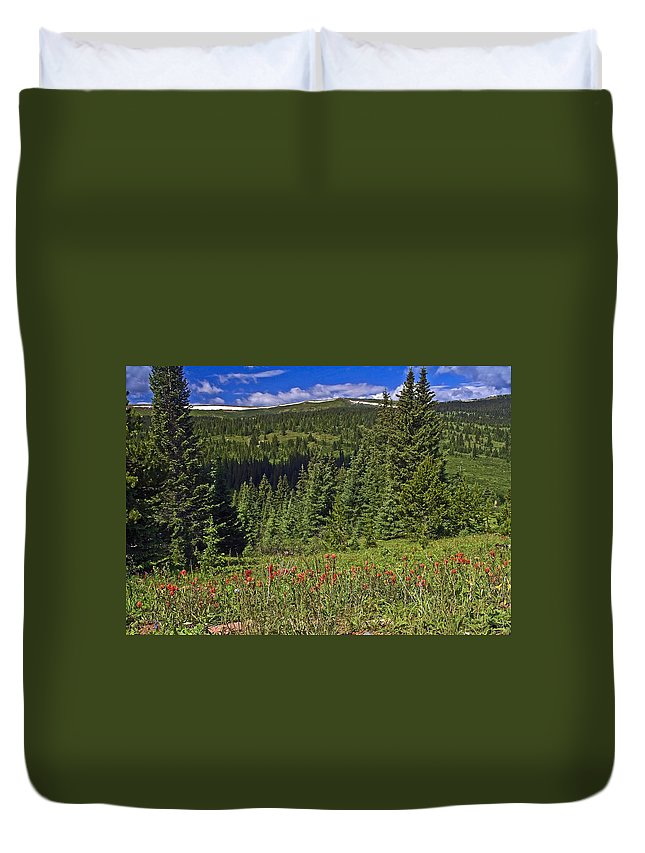 Mountain Meadow Scene Duvet Cover featuring the photograph Mountain Meadow Scene by Sally Weigand