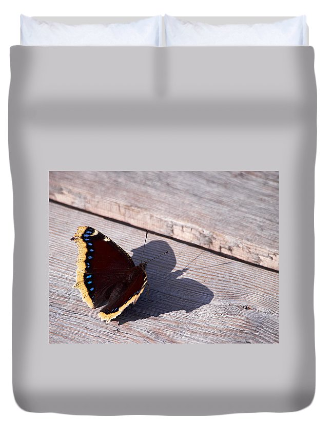 Finland Duvet Cover featuring the photograph Mourning Cloak by Jouko Lehto