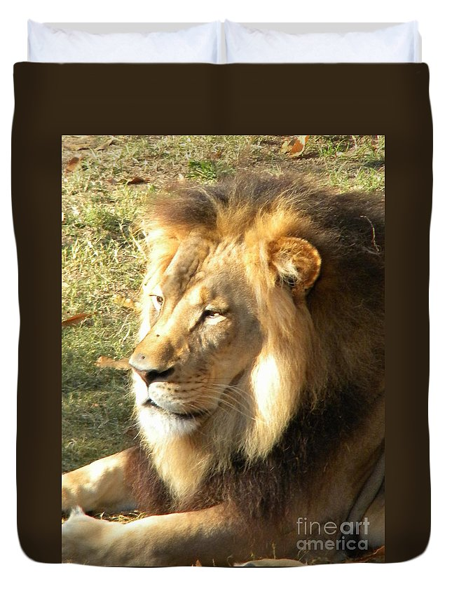 Lion Duvet Cover featuring the photograph Mufasa by Nathanael Smith