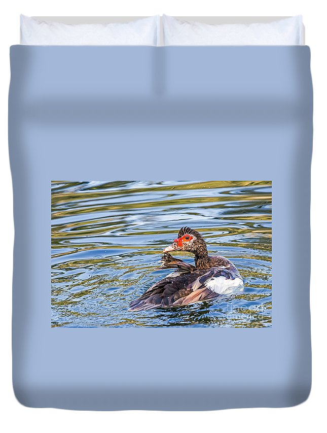 Bird Duvet Cover featuring the photograph Muscovy Hen by Kate Brown