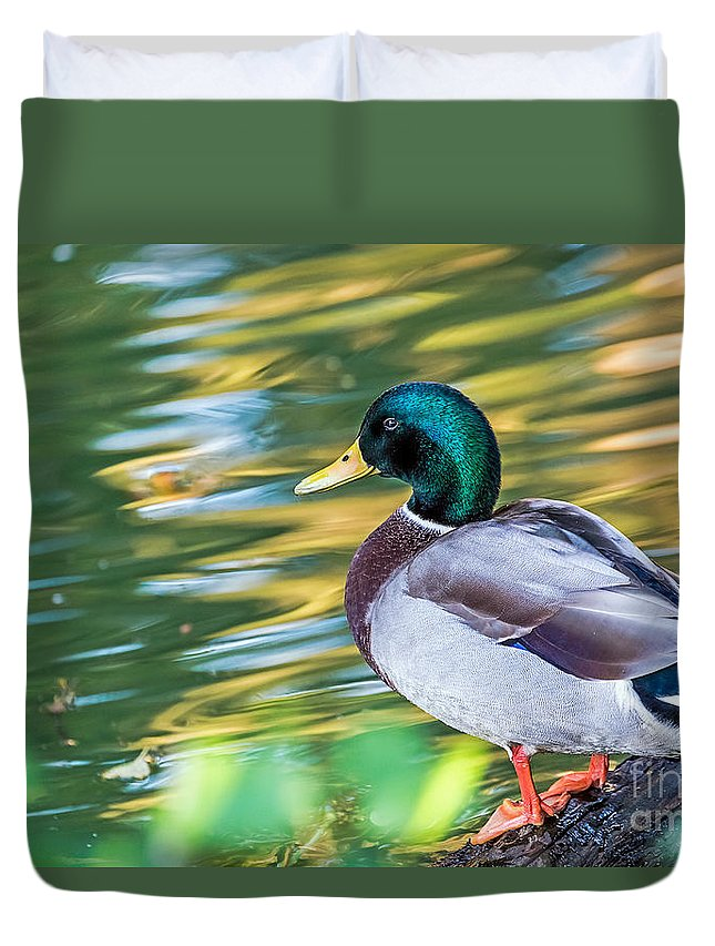 Bird Duvet Cover featuring the photograph Musing by Kate Brown