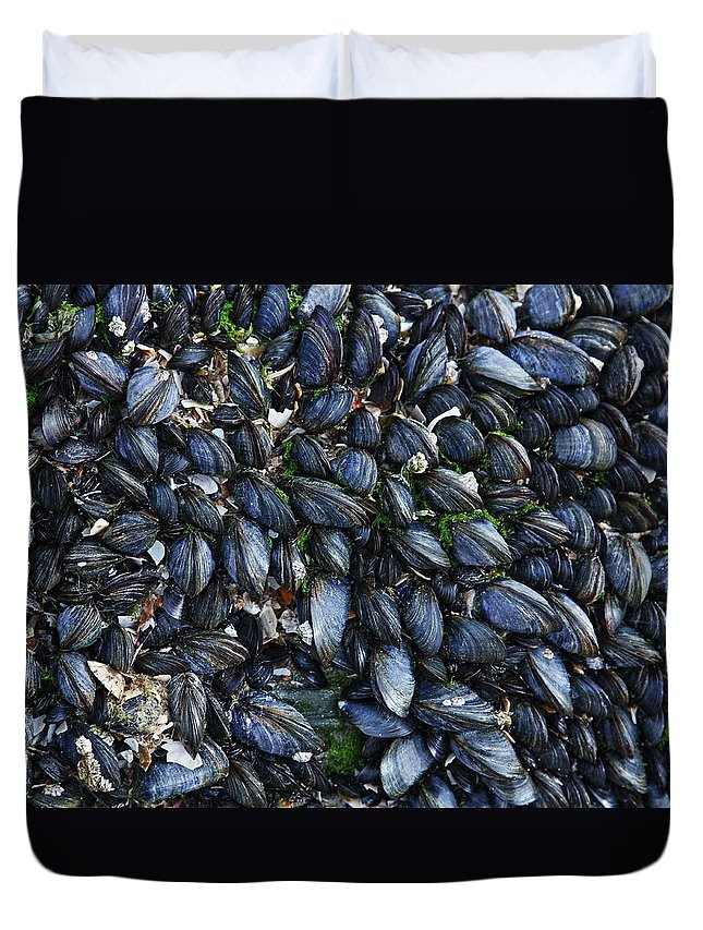 Mussels Duvet Cover featuring the photograph Mussels by Paul Williams