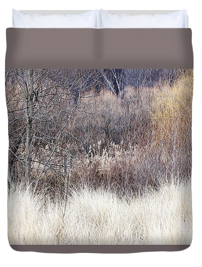 Trees Duvet Cover featuring the photograph Muted Colors Of Winter Forest by Elena Elisseeva