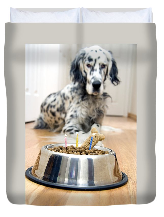 Dog Duvet Cover featuring the photograph My Best Friend's Birthday by Alexey Stiop