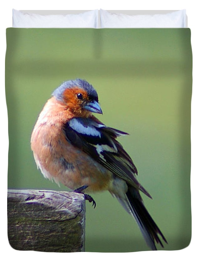 Bird Duvet Cover featuring the photograph My Best Side by Nancy L Marshall