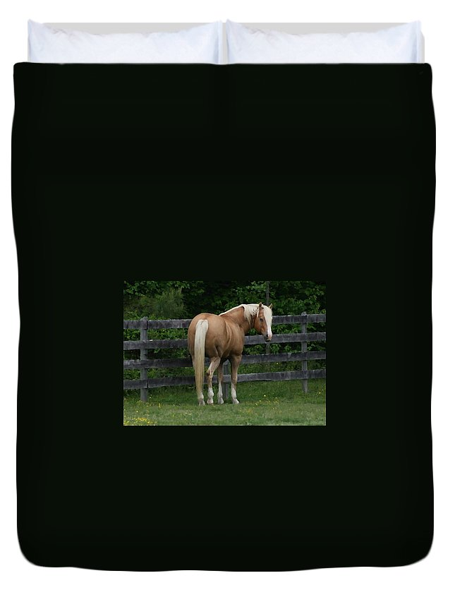 Horse Duvet Cover featuring the digital art My Dream Horse by Tina Meador