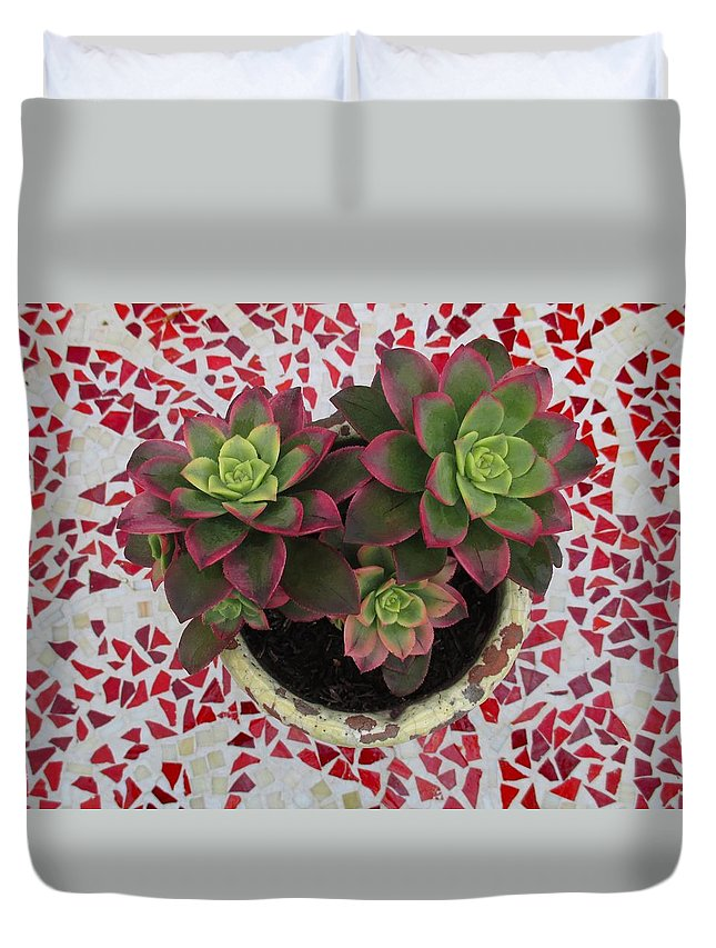 Garden Duvet Cover featuring the photograph My Garden Series - Mosaica by Alison Stein